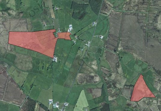 Meelick Upper, Williamstown, Co. Roscommon 52 acres land for Sale